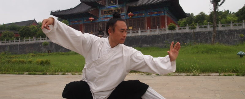 Wudang Tai Chi według Mistrza Zhou Xuan Yun- spis ruchów